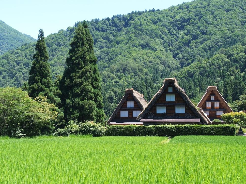 Gifu Classic Trip