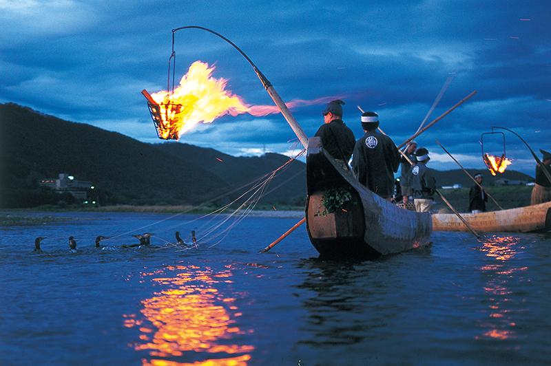 Naragawa River Cormorant