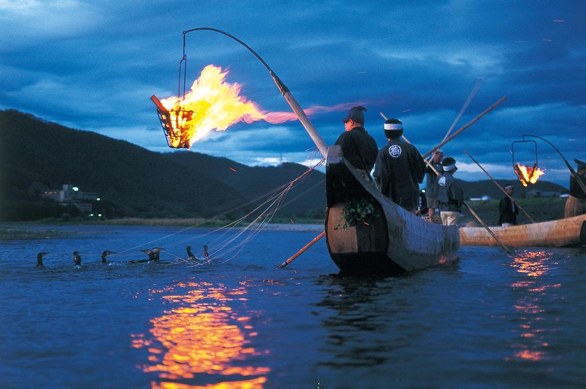 Gifu Nagaragawa Cormorant Fishing