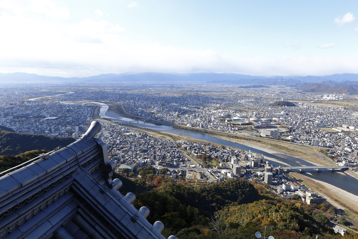 Gifu Castle View