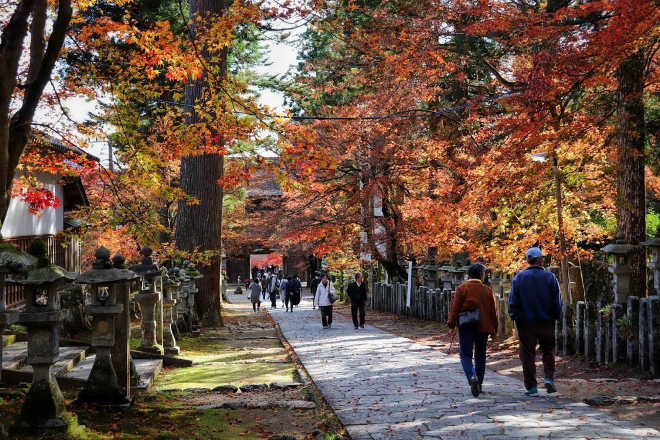 Templo de Kegon-ji