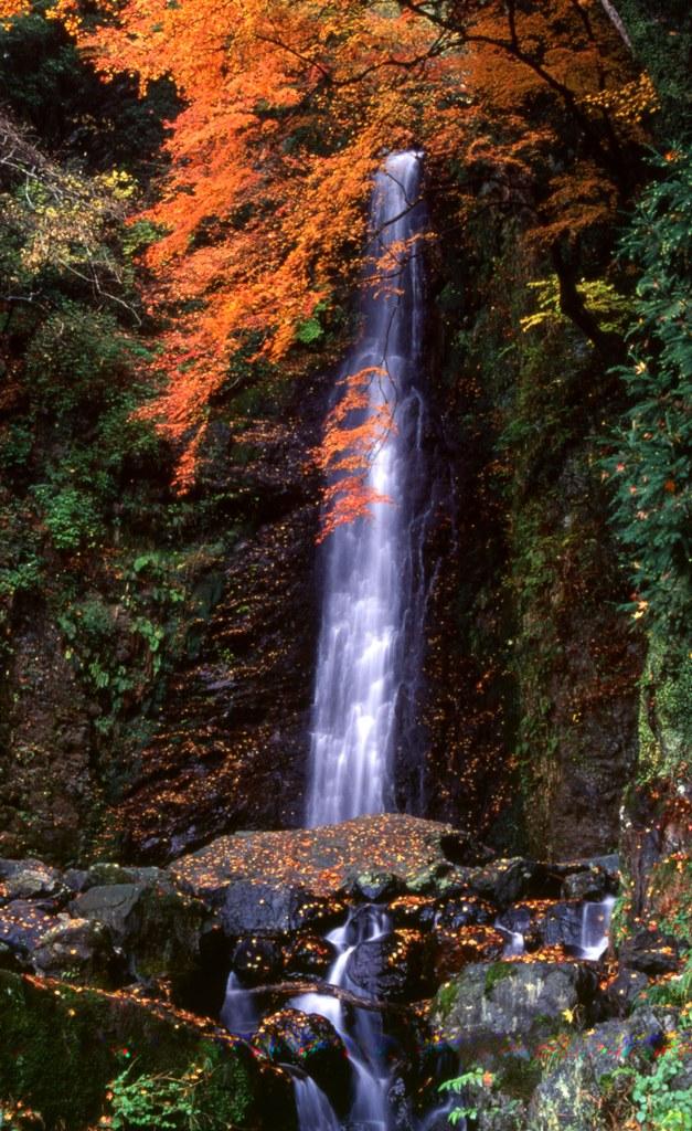 Yoro Falls Autumn
