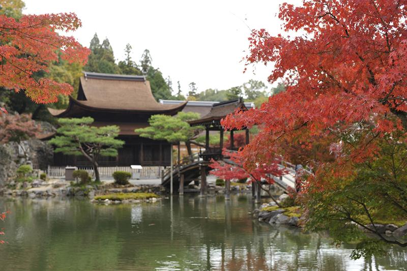 Tempio di Eiho-ji / Templo Eiho-ji