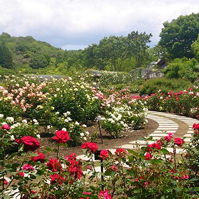 Parco Flower Festival Memorial